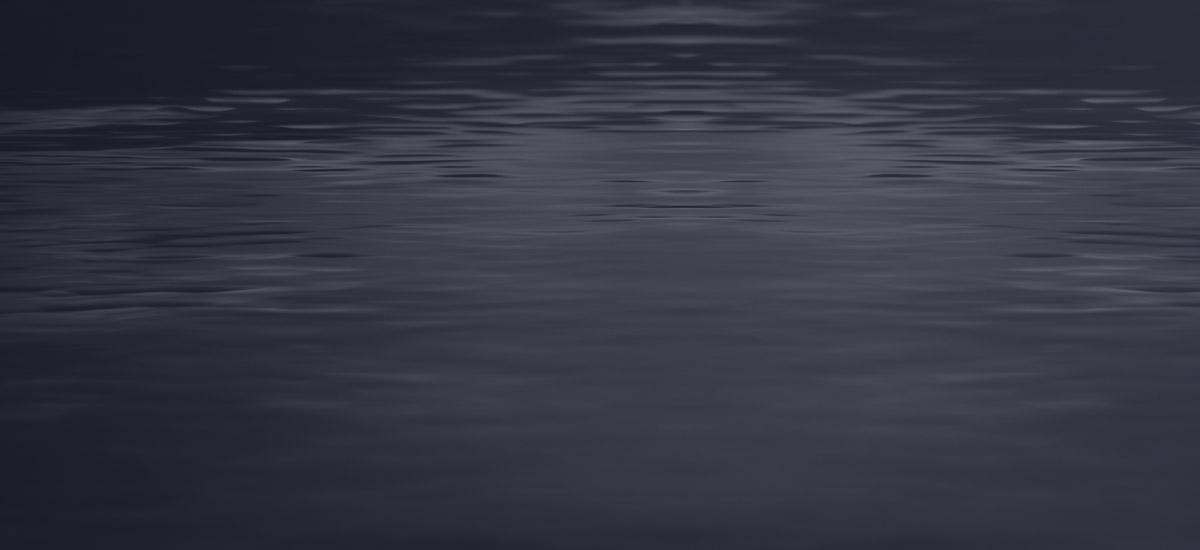 Environnement - Rive et plan d'eau