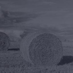 Entente pour soutenir le développement des activités agricoles et bioalimentaires dans le Grand Montréal