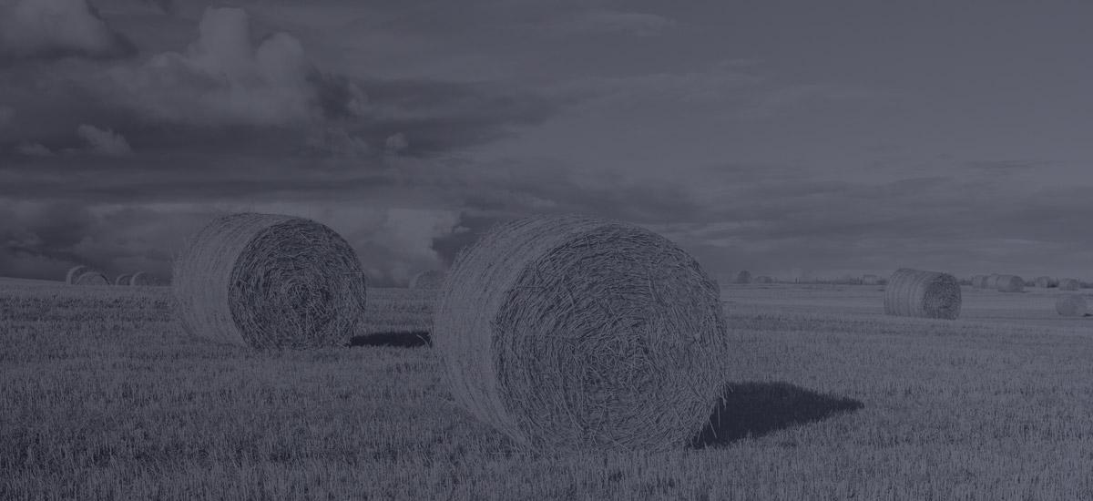 Membres - Comité consultatif agricole de la Communauté Métropolitaine de Montréal