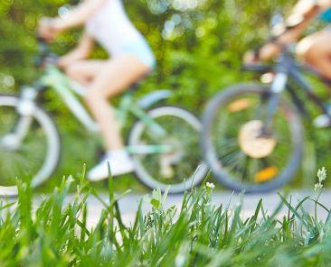 Vélos sur une piste cyclable