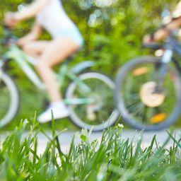 COVID-19 | La CMM propose des mesures pour améliorer rapidement la mobilité active des citoyens du Grand Montréal