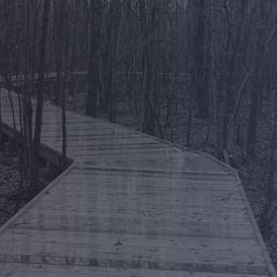 Inauguration d'un sentier pédestre au parc de la Futaie - Un investissement de plus de 800 000 $