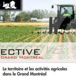 Perspective Grand Montréal No18