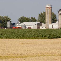La CMM et les élus de la Couronne Nord jugent déraisonnable un avis favorable au dézonage de terres agricoles