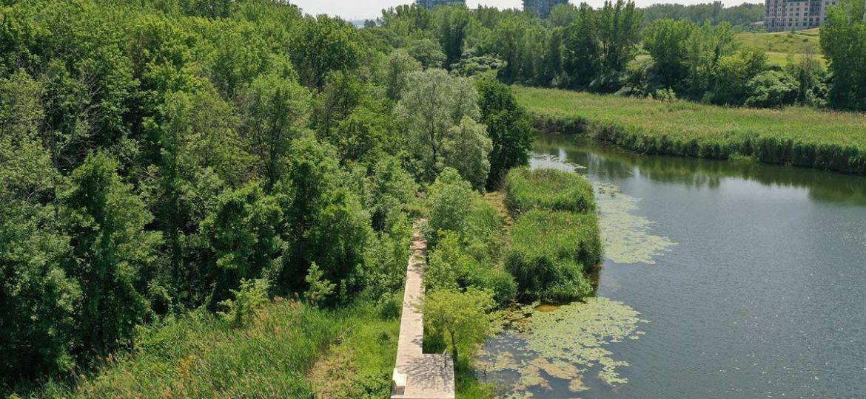 Restauration et de mise en valeur des berges du lac des Battures, Verdun